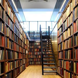 Библиотеки Тиличиков