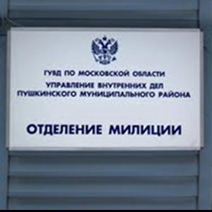 Отделения полиции Тиличиков